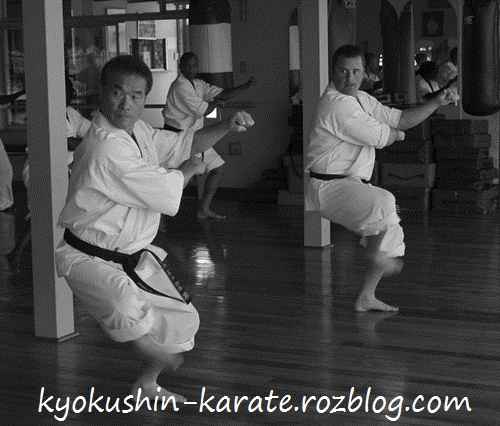 کاتا کیوکوشین کاراته