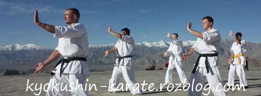 هدف از تمرینات کیوکوشین کاراته