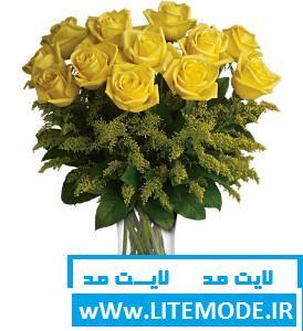رومانتیک, عاشقانه, عکس, عکس رومانتیک, عکس عاشقانه, عکس های زیبای گل رز, عکس گل رز, مجموعه عکس های گل رز, گالری عکس های گل رز, گل رز, گل رز قزمز  رز, رز قرمز, سایت عکس, سایت گل رز, عکس رز, عکس های گلهای رز زیبا, عکس گل, عکس گل رز, عکس گلهای رز قرمز, گالری عکس گل رز, گالری گلهای رز, گل, گل رز - rose red, گل رز قرمز, گل رز قرمز زیبا تزئینات عروسی, تزئینات عقد, تزئینات عقد و عروسی, جدیدترین مدل دسته گل نامزدی, جهانیها, دسته گل, دسته گل زیبا, دسته گل زیبای نامزدی, دسته گل شیک, دسته گل نامزدی 2014, دسته گل نامزدی جدید, دسته گل نامزدی زیبا, عروس, عقد, عکس دسته گل نامزدی, نامزدی, گالری دسته نامزدی, گل, گل ارکیده, گل رز  تصاویر گل, تصاویر گل رز, جهانیها, عکس, عکس دسته گل, عکس گل, عکس گل برای والپیپر, عکس گل رز آبی, عکس گل رز زرد, عکس گل رز سرخ, عکس گل رز سفید, عکس گل رز صورتی, عکس گل رز قرمز, عکس گل زیبا, گالری عکس گل رز, گل, گل رز