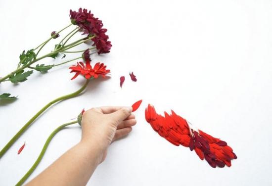 گلبرگ های گل,هنرمند چینی ,گل,خلاقیت ,گلبرگ های گل هنرمند چینی ,گلبرگ های گل گل,گلبرگ های گل خلاقیت ,هنرمند چینی گلبرگ های گل,گلبرگ های گل گل,هنرمند چینی خلاقیت ,گل گلبرگ های گل,گل هنرمند چینی ,گل خلاقیت ,خلاقیت گلبرگ های گل,خلاقیت هنرمند چینی ,خلاقیت گل,گلبرگ های گل هنرمند چینی گل,گلبرگ های گل هنرمند چینی خلاقیت ,گلبرگ های گل گل هنرمند چینی ,گلبرگ های گل گل خلاقیت ,گلبرگ های گل خلاقیت هنرمند چینی ,گلبرگ های گل خلاقیت گل,هنرمند چینی گلبرگ های گل گل,هنرمند چینی گلبرگ های گل خلاقیت ,هنرمند چینی گل خلاقیت ,هنرمند چینی گل گلبرگ های گل,هنرمند چینی خلاقیت گلبرگ های گل,هنرمند چینی خلاقیت گل,گل گلبرگ های گل هنرمند چینی ,گل گلبرگ های گل خلاقیت ,گل هنرمند چینی گلبرگ های گل,گل هنرمند چینی خلاقیت ,گل خلاقیت گلبرگ های گل,گل خلاقیت هنرمند چینی ,خلاقیت گلبرگ های گل هنرمند چینی ,خلاقیت گلبرگ های گل گل,خلاقیت هنرمند چینی گلبرگ های گل,خلاقیت هنرمند چینی گل,خلاقیت گل گلبرگ های گل,خلاقیت گل هنرمند چینی ,گلبرگ های گل هنرمند چینی گل خلاقیت ,گلبرگ های گل گل خلاقیت هنرمند چینی ,گلبرگ های گل خلاقیت هنرمند چینی گل,گلبرگ های گل گل هنرمند چینی خلاقیت ,گلبرگ های گل گل خلاقیت هنرمند چینی ,گلبرگ های گل هنرمند چینی خلاقیت گل,هنرمند چینی گلبرگ های گل گل خلاقیت ,هنرمند چینی گلبرگ های گل خلاقیت گل,هنرمند چینی گل خلاقیت گلبرگ های گل,هنرمند چینی گل گلبرگ های گل خلاقیت ,گل گلبرگ های گل هنرمند چینی خلاقیت ,گل هنرمند چینی گلبرگ های گل خلاقیت ,گل خلاقیت گلبرگ های گل هنرمند چینی ,گل خلاقیت هنرمند چینی گلبرگ های گل,خلاقیت گلبرگ های گل هنرمند چینی گل,خلاقیت هنرمند چینی گلبرگ های گل گل,خلاقیت گل گلبرگ های گل هنرمند چینی ,خلاقیت هنرمند چینی گل گلبرگ های گل,خلاقیت گل هنرمند چینی گلبرگ های گل,