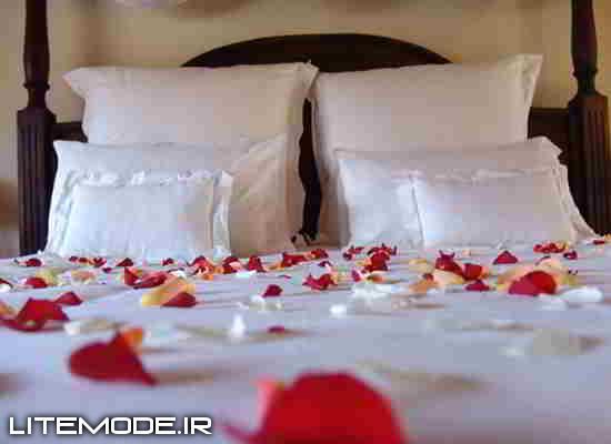 تزیین , اتاق خواب,عروس و داماد,دکوراسیون,تزیین اتاق خواب,تزیین عروس و داماد,تزیین دکوراسیون, اتاق خواب تزیین ,تزیین عروس و داماد, اتاق خواب دکوراسیون,عروس و داماد تزیین ,عروس و داماد اتاق خواب,عروس و داماد دکوراسیون,دکوراسیون تزیین ,دکوراسیون اتاق خواب,دکوراسیون عروس و داماد,تزیین اتاق خواب عروس و داماد,تزیین اتاق خواب دکوراسیون,تزیین عروس و داماد اتاق خواب,تزیین عروس و داماد دکوراسیون,تزیین دکوراسیون اتاق خواب,تزیین دکوراسیون عروس و داماد, اتاق خواب تزیین عروس و داماد, اتاق خواب تزیین دکوراسیون, اتاق خواب عروس و داماد دکوراسیون, اتاق خواب عروس و داماد تزیین , اتاق خواب دکوراسیون تزیین , اتاق خواب دکوراسیون عروس و داماد,عروس و داماد تزیین اتاق خواب,عروس و داماد تزیین دکوراسیون,عروس و داماد اتاق خواب تزیین ,عروس و داماد اتاق خواب دکوراسیون,عروس و داماد دکوراسیون تزیین ,عروس و داماد دکوراسیون اتاق خواب,دکوراسیون تزیین اتاق خواب,دکوراسیون تزیین عروس و داماد,دکوراسیون اتاق خواب تزیین ,دکوراسیون اتاق خواب عروس و داماد,دکوراسیون عروس و داماد تزیین ,دکوراسیون عروس و داماد اتاق خواب,تزیین اتاق خواب عروس و داماد دکوراسیون,تزیین عروس و داماد دکوراسیون اتاق خواب,تزیین دکوراسیون اتاق خواب عروس و داماد,تزیین عروس و داماد اتاق خواب دکوراسیون,تزیین عروس و داماد دکوراسیون اتاق خواب,تزیین اتاق خواب دکوراسیون عروس و داماد, اتاق خواب تزیین عروس و داماد دکوراسیون, اتاق خواب تزیین دکوراسیون عروس و داماد, اتاق خواب عروس و داماد دکوراسیون تزیین , اتاق خواب عروس و داماد تزیین دکوراسیون,عروس و داماد تزیین اتاق خواب دکوراسیون,عروس و داماد اتاق خواب تزیین دکوراسیون,عروس و داماد دکوراسیون تزیین اتاق خواب,عروس و داماد دکوراسیون اتاق خواب تزیین ,دکوراسیون تزیین اتاق خواب عروس و داماد,دکوراسیون اتاق خواب تزیین عروس و داماد,دکوراسیون عروس و داماد تزیین اتاق خواب,دکوراسیون اتاق خواب عروس و داماد تزیین ,دکوراسیون عروس و داماد اتاق خواب تزیین ,