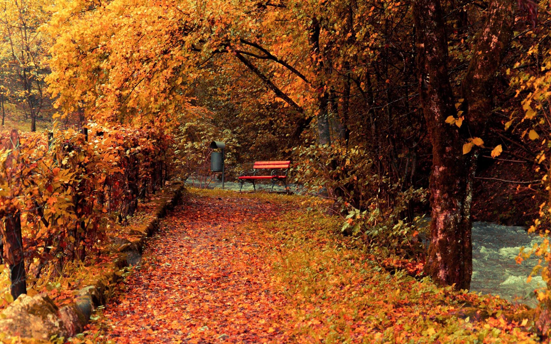 اواخر پاییز