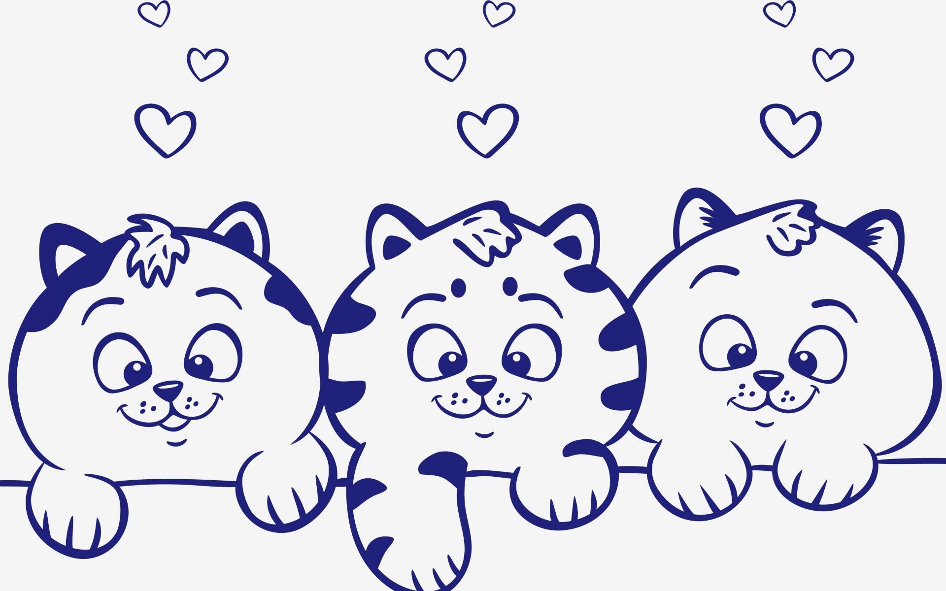بچه گربه ها