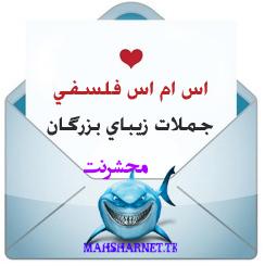 http://rozup.ir/up/mahsharnet/t751pszxd1nsd9jme5r.png
