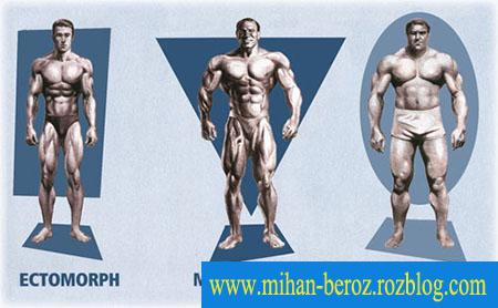 آشنایی با انواع تیپ های بدنی در ورزش بدنسازی