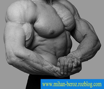 ۶ دروغ در ورزش بدنسازی که باعث عدم رشد شما میشود!