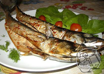 آموزش درست کردن کباب ماهی در سس گوجه فرنگی
