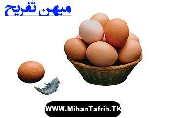 http://rozup.ir/up/mihantafrih/tokhm_morgh.jpg