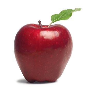 apple   sib   سیب
