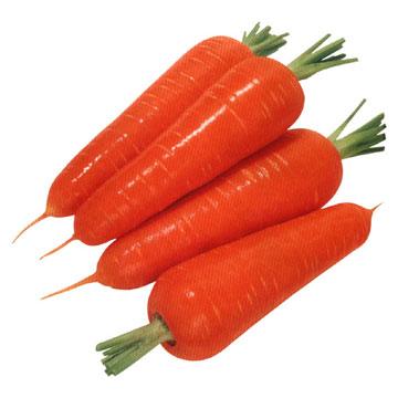 http://rozup.ir/up/minerva/giyahane-daroii/carrot.jpg