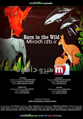 دانلود مستند زاده ی حیات وحش Born in the Wild 2014