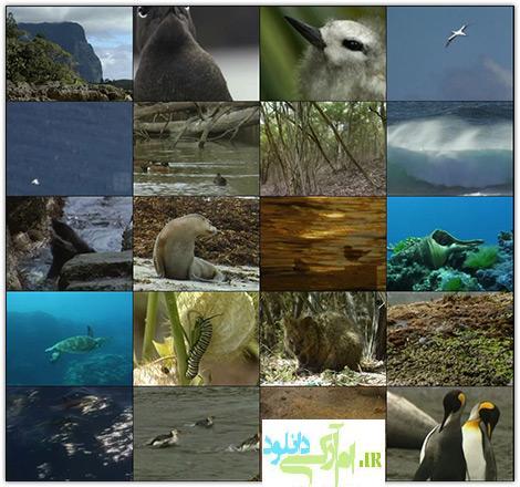 دانلود مستند جزایر استرالیا Wildest Islands of Australia 1999