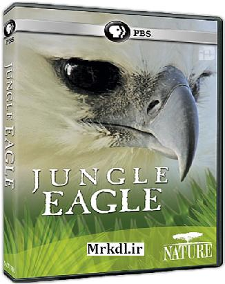دانلود مستند عقاب جنگل PBS Jungle Eagle 2011