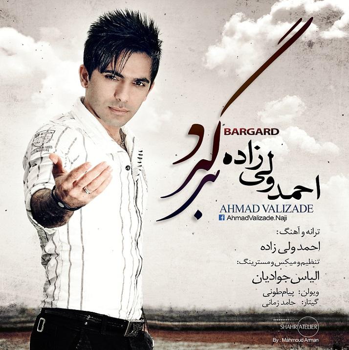دانلود آهنگ جدید احمد ولی زاده به نام برگرد