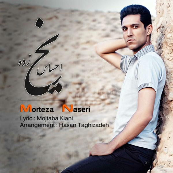 دانلود آهنگ جدید مرتضی ناصری به نام احساس یخ زده