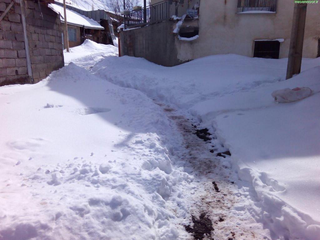 تصاویر زمستان نسن در بهمن ماه