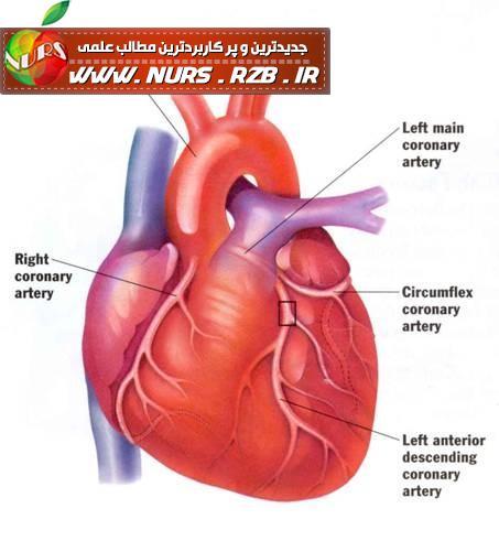 کتابچه آموزشی مراقبتی قلب و عروق در بخش نوزادان