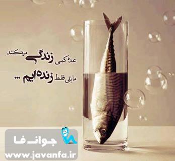 سخنان حکیمانه و آموزنده خرداد 93