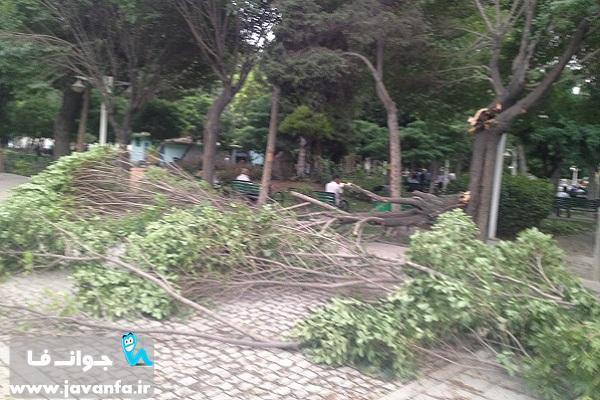 عکس های طوفان خرداد 93 تهران