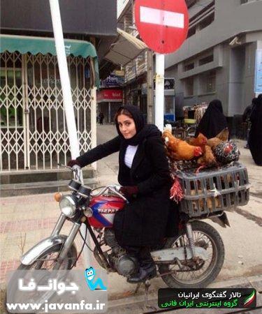 عکس دیدنی از مرغ فروشی سیار الناز شاکردوست