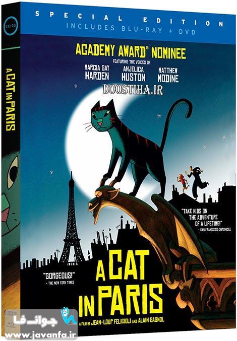 دانلود رایگان انیمیشن گربه ای در پاریس با دوبله فارسی A Cat in Paris 2010