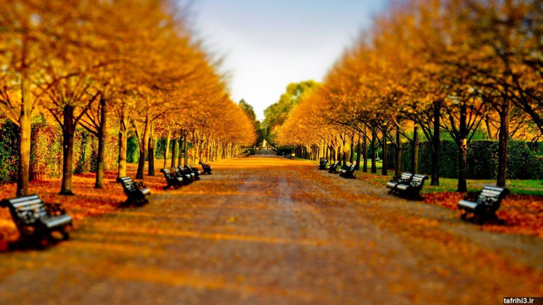 عکس های فصل پاییز با کیفیت اچ دی ۲۰۱۵