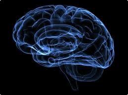 پنج 5 عادتی که مغز را نابود می کند