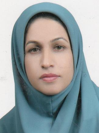 پروژه جهاد نکاح، جنگ نرم علیه همبستگی ملت ایران