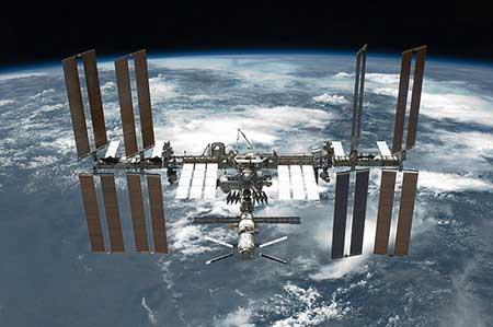 کشف جانداری باور نکردنی در پنجرههای ایستگاه فضایی + تصاویر