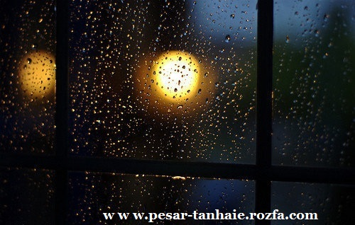 http://rozup.ir/up/pesar-tanhaie/Pictures/our-%20hearts-that-we-write.jpg