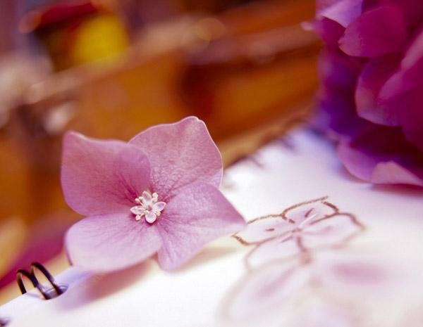 تصاویر هنری تصاویر عاشقانه هنری جدید 92