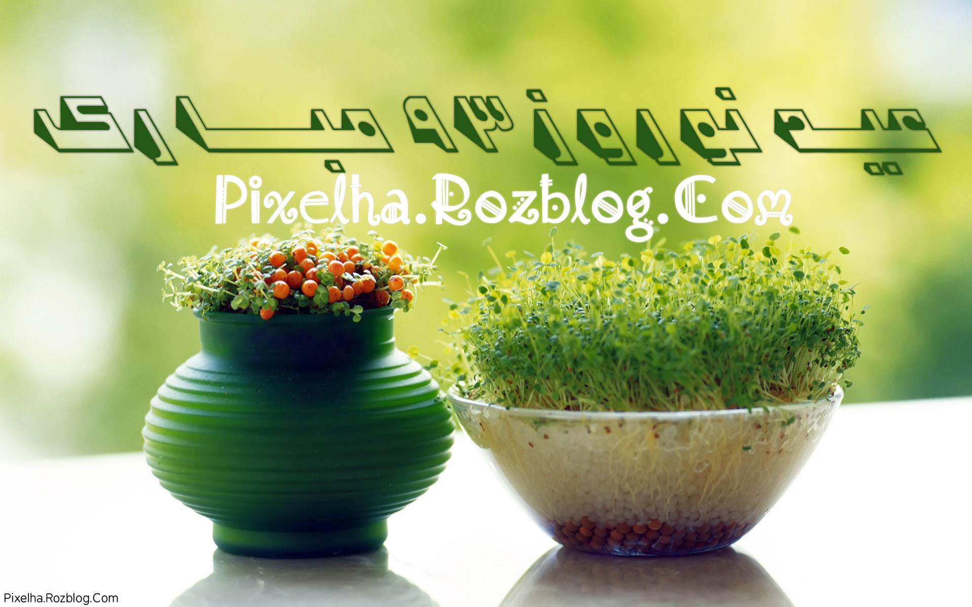 عید نوروز 93 مبارک