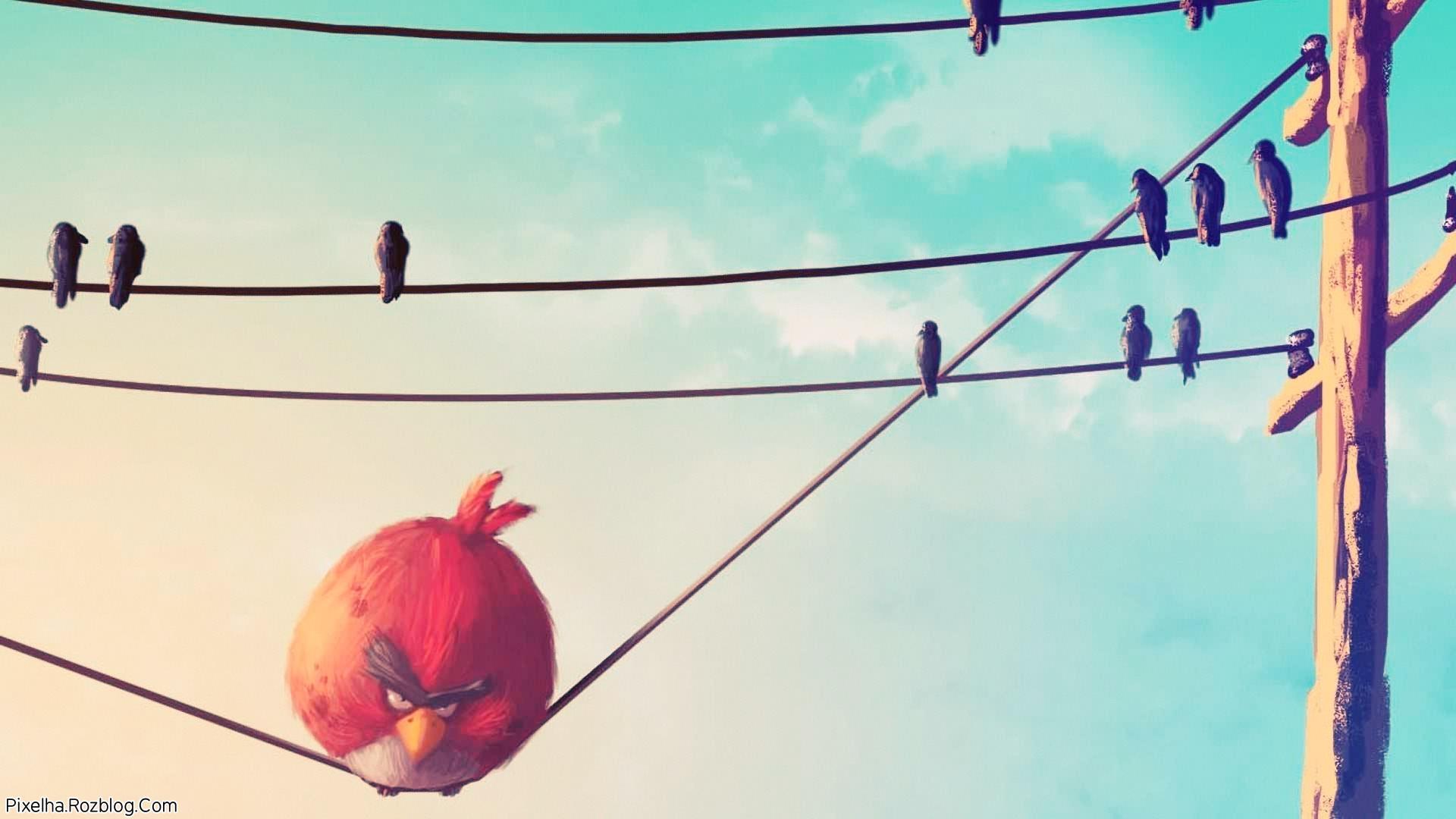 پرندگان خشمگین عصبانی