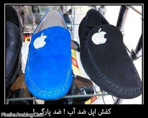 کفش اپل