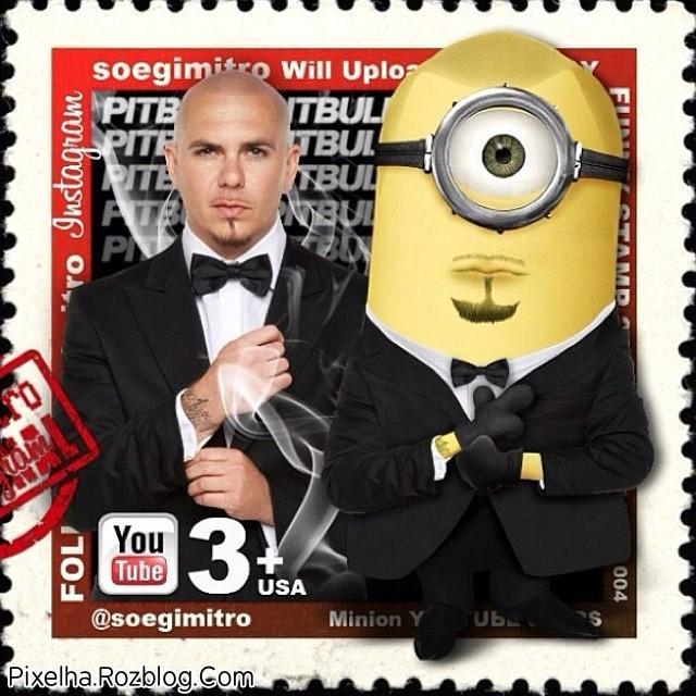 شباهت Pitbull با مینیون