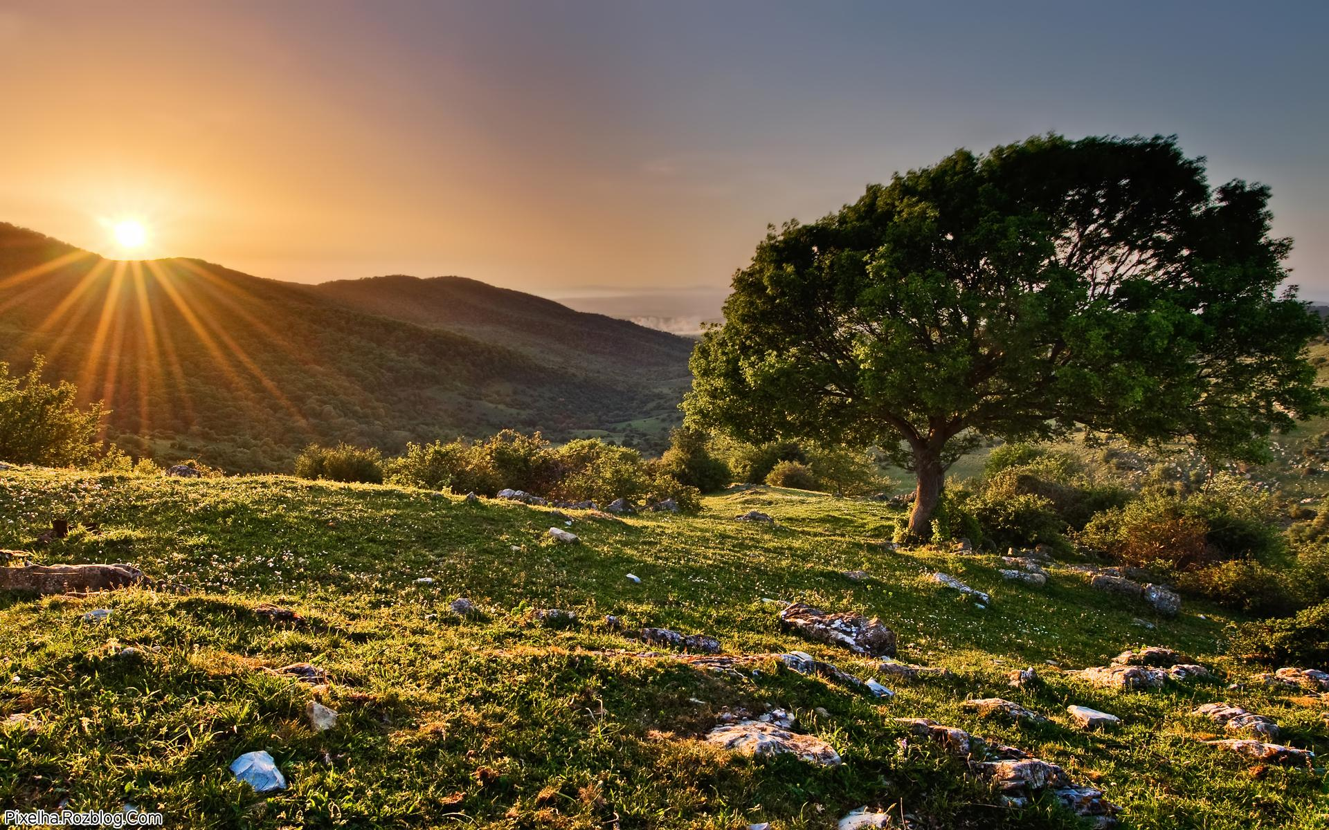 غروب خورشید در کوه
