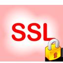 پاورپوینت آشنایی با پروتکل SSL