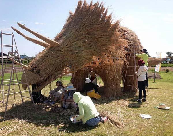 برداشت برنج و جشن جالب شاليکاران ژاپني