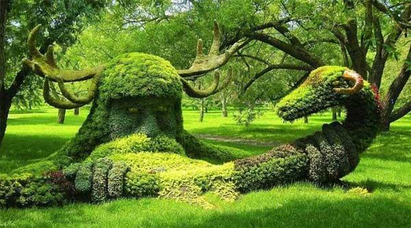 درخت آرایی های بی نظیر