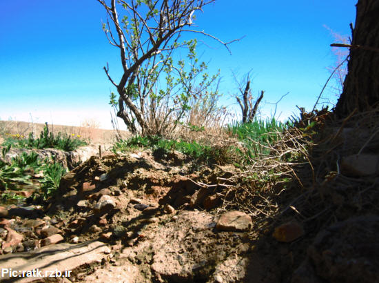 رنگ بهار در روستای تاریخی رتک