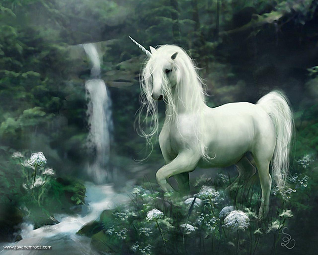 عکس زیبا و رویایی اسب شاخ دار