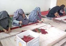 18 کارگاه بافندگی برای کمک به بازسازی عتبات عالیات سرایان راه اندازی می شود