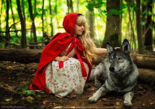 شنل قرمزی و اقا گرگه