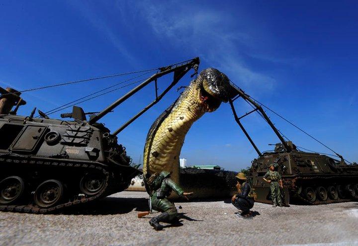 عکس بزرگترین مار دنیا