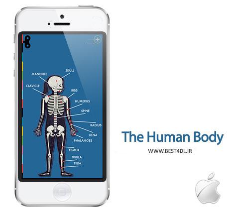 the human body شناسایی اعضای بدن با The Human Body by Tinybop   آیفون و آیپد