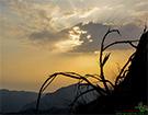 سری هشتم عکس های پشتو زادگاه من با غروب آفتاب