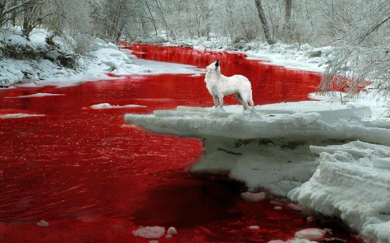 رودخانه خون آلود