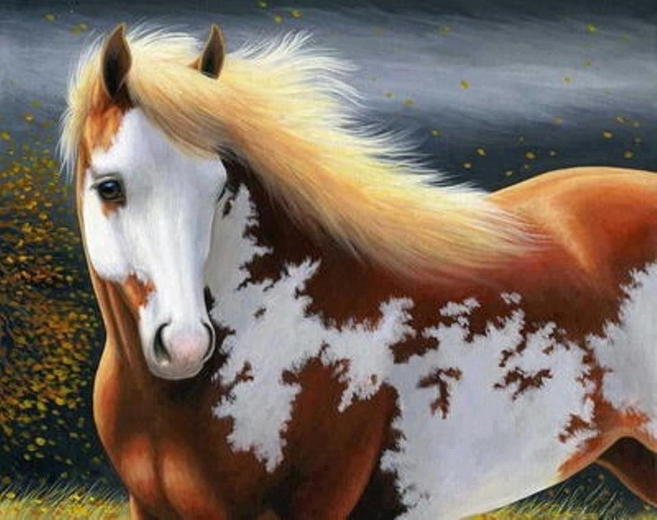 نقاشی یک اسب زیبا