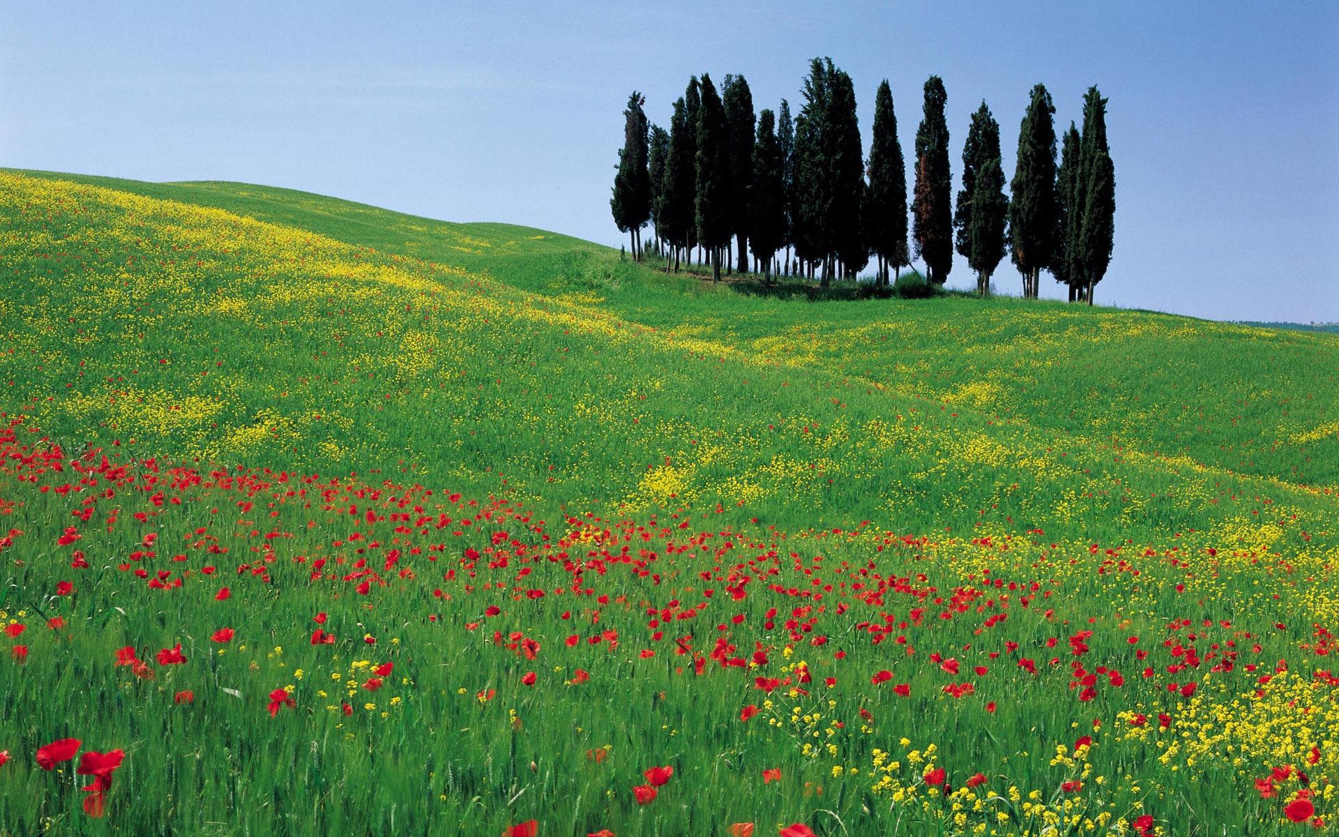 طبیعت بهاری ایتالیا