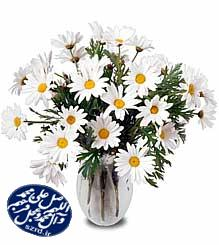 پیامک های تبریک ولادت حضرت زینب و روز پرستار